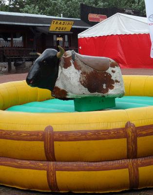rodeos tier of bull verhuur in België